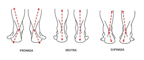 Tipos de pisada: pronada, neutra e supinada.